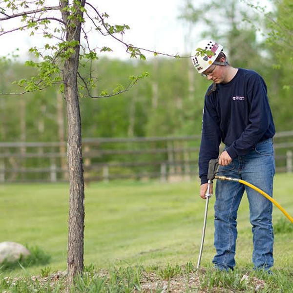 Deep Root Fertilizing